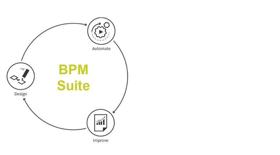 iGrafx BPM Suite