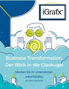 Business Transformation mit iGrafx BPM Software